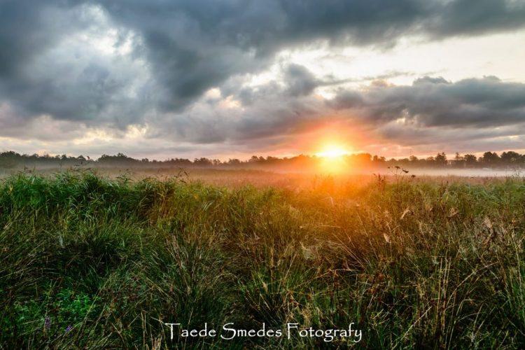Taede Smedes_Fotografie_Landschapsfotografie_Garijp