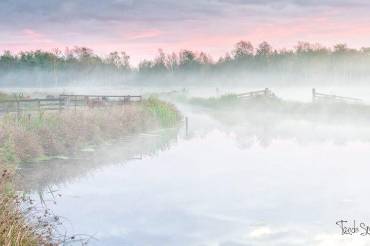 Taede Smedes, fotografie, landschapsfotograaf, alde feanen, schilderij, eernewoude, garyp