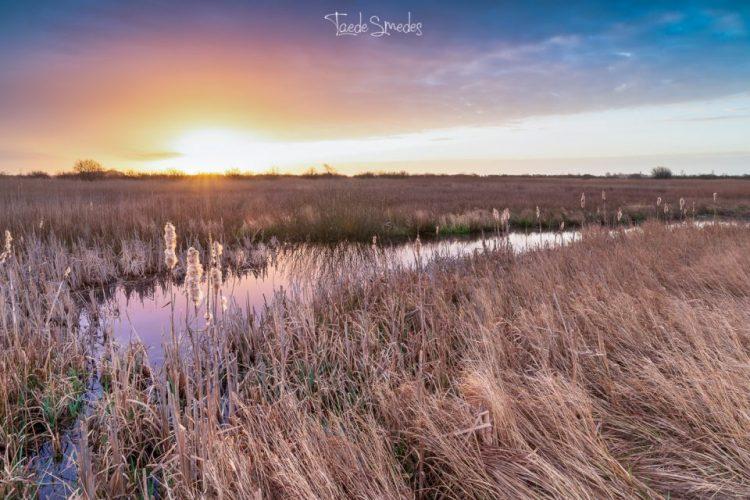 Taede Smedes, landschapsfotograaf, Garyp, Fryske Gea, zonsopkomst