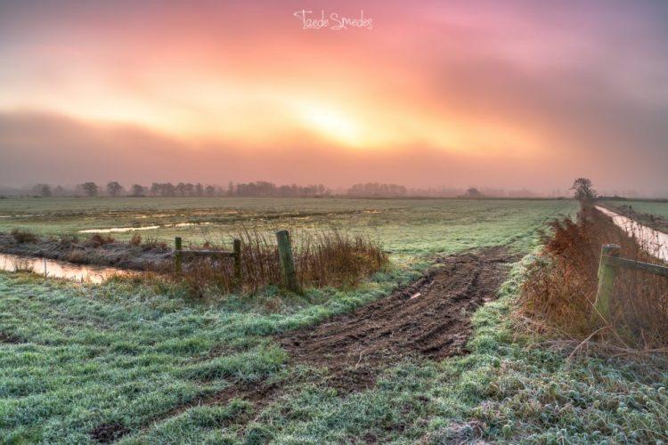 taede smedes, landschapsfotografie, garijp, mist, zonsopkomst, friesland