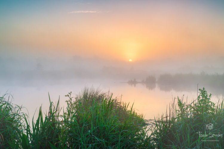 Taede Smedes, Garijp, Fotograaf Friesland, Mist